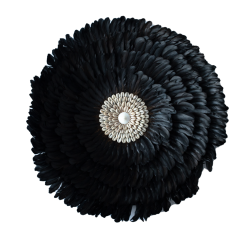 Ju Ju Feather & Shell Wall Art - Black Small